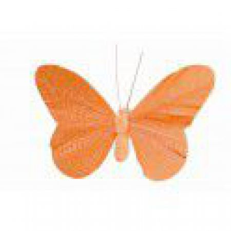 Papillon Orange scintillant